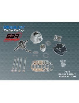Pack Bidalot Racing Factory 80cc AM6