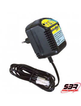 Chargeur batterie Accumate 12V 0,6A