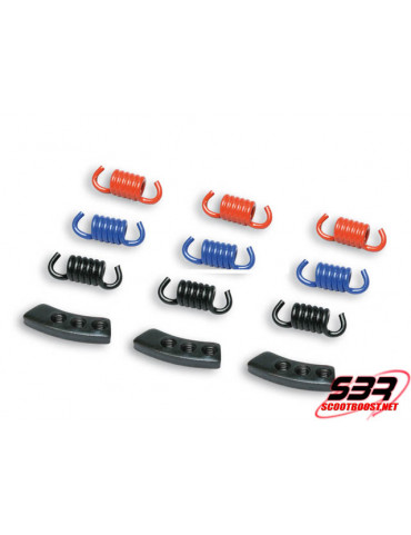 Kit de ressort d'embrayage Malossi Racing Fly/Delta Clutch