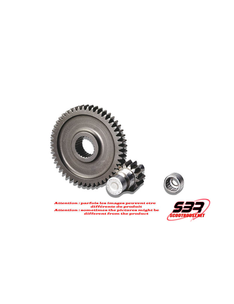 Engrenages Sec. Roller Gear Malossi z 14/47 (Force 17mm)