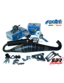 Pack cylindre - échappement - vilebrequin Polini Big Evo 94cc MBK Nitro / Aerox